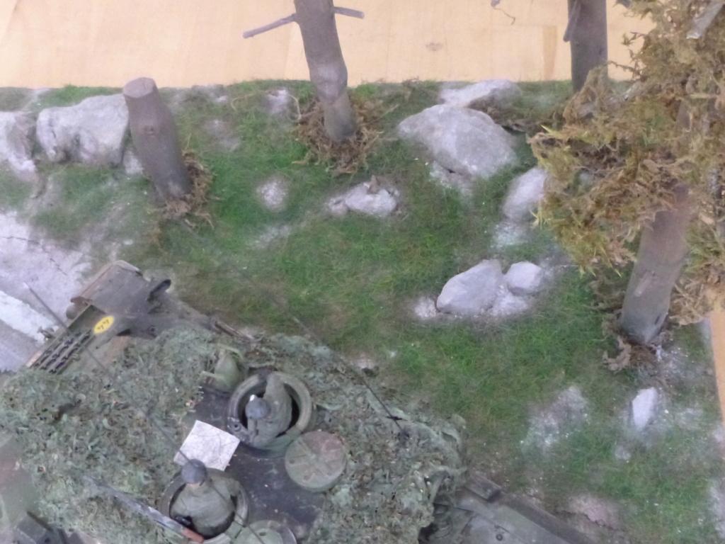REFORGER Allemagne année 70 - 1:35 -Italeri Leopard 1A4-Valkyrie miniatures P1070524