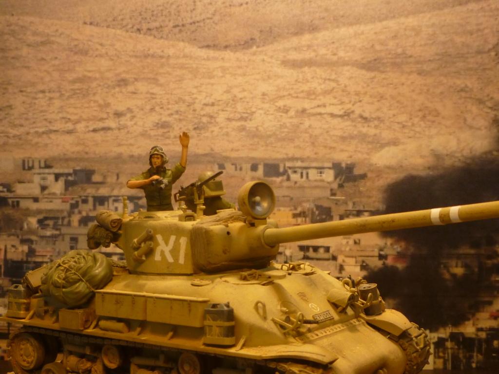 Guerre des 6 jours 1967 P1070926