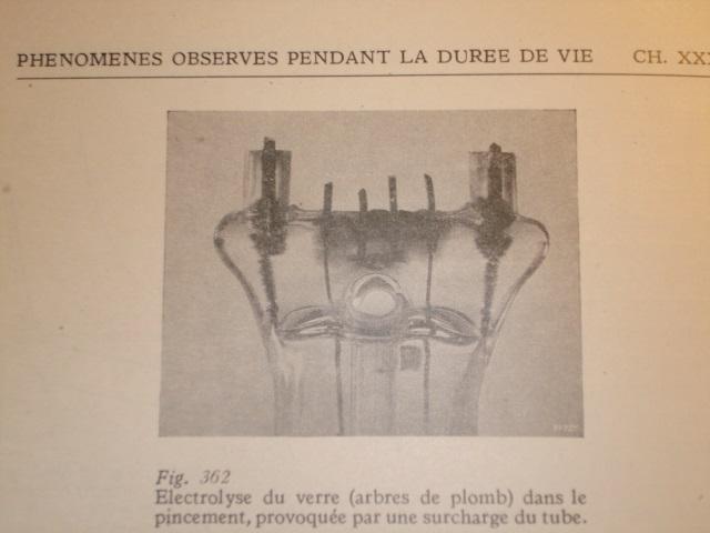 amplificazioni a valvole italiane di tipo artigianale   - Pagina 2 Alberi10
