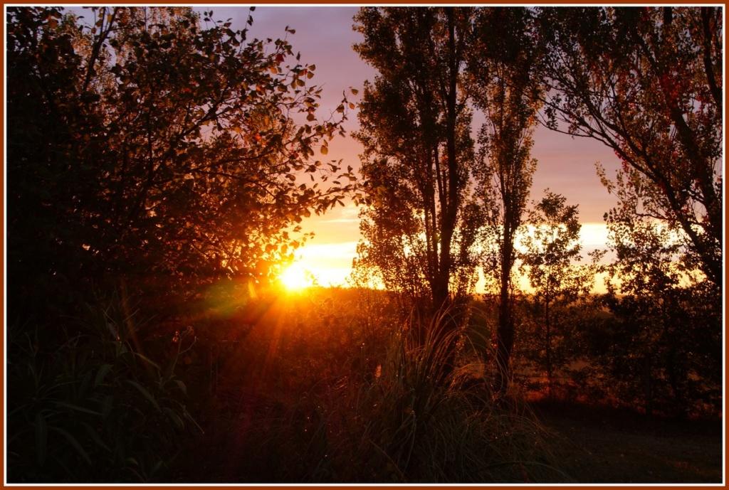 (Fil ouvert) Coucher de soleil - Page 4 Dsc01930