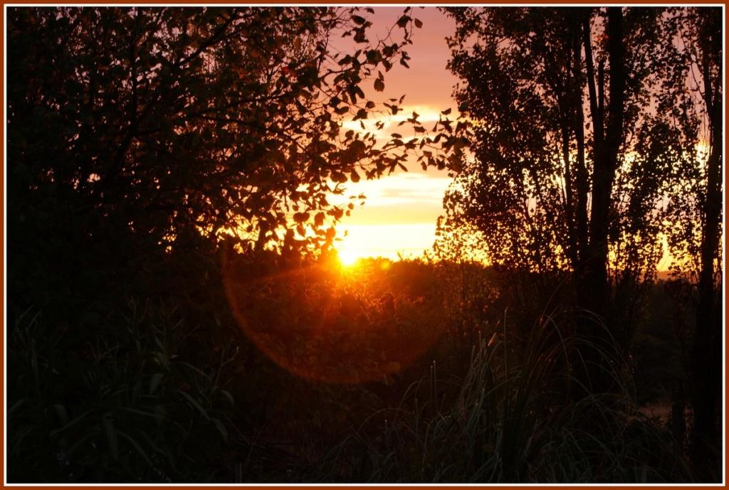 (Fil ouvert) Coucher de soleil - Page 4 Dsc01932
