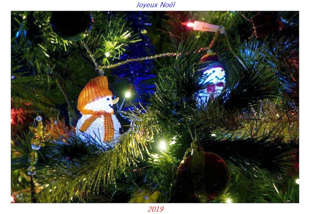 Thème du mois de décembre 2019 :  Le mois de décembre ! Dsc02233