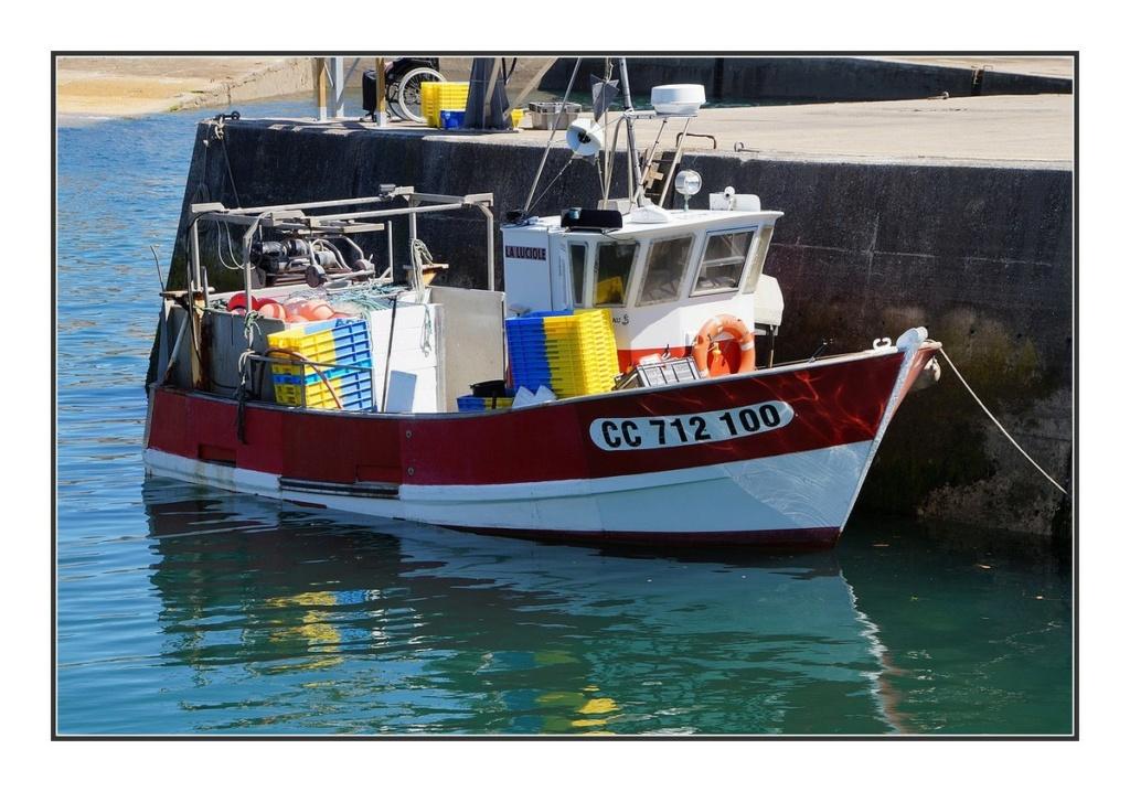 [VIE DES PORTS] Quelques bateaux de pêche (sur nos côtes Françaises) - Page 6 Dsc03819