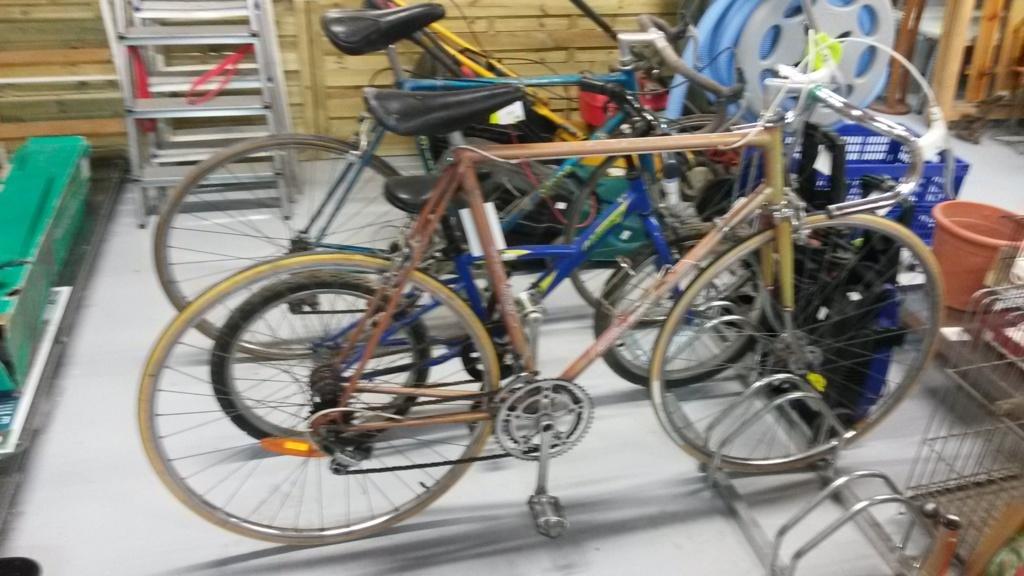 Le vélo de mon papa : Francesco Moser 52110
