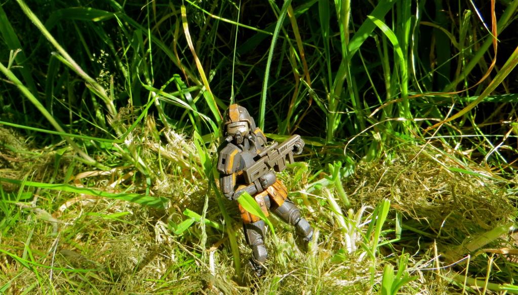 Selvaland, mes soldats en action - Page 13 Img_6010