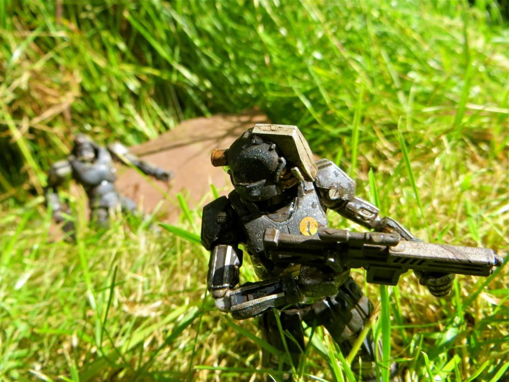 Selvaland, mes soldats en action - Page 13 Img_6011