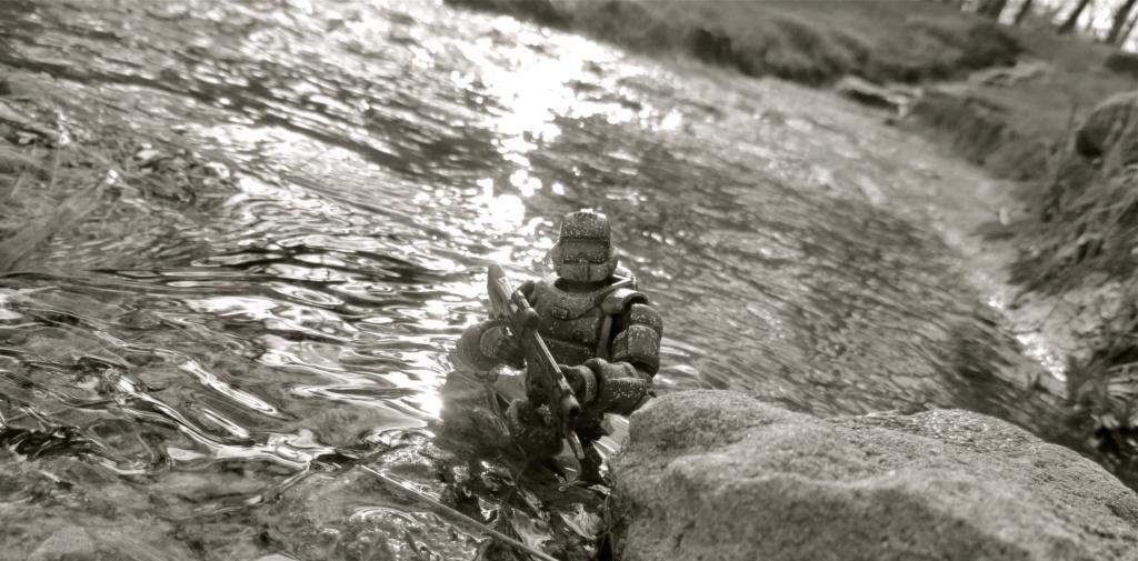 Selvaland, mes soldats en action - Page 13 Img_6510