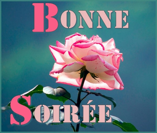 Bonjour -Bonsoir du mois d'Aout  - Page 6 246f9e11