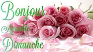 Bonjour -Bonsoir du mois d'Octobre  - Page 2 3d75ec10