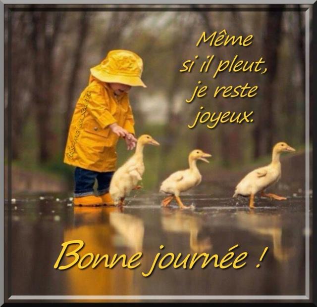 Bonjour -Bonsoir du mois de JANVIER  - Page 2 Bonne-71