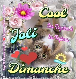 Bonjour -Bonsoir du mois d'Aout  - Page 4 Dimanc15