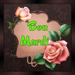 Bonjour -Bonsoir du mois d'Aout  - Page 4 Mardi_15