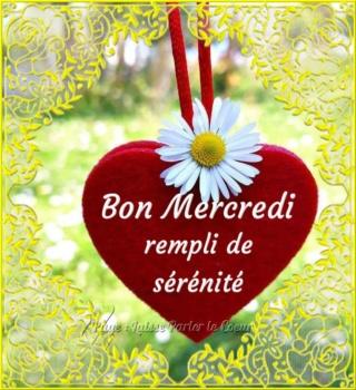 Bonjour -Bonsoir du mois d'Aout  - Page 2 Mercre11