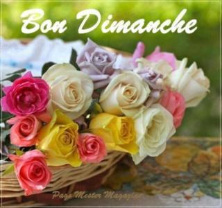Bonjour -Bonsoir du mois d'Aout  - Page 5 Pa3ams10