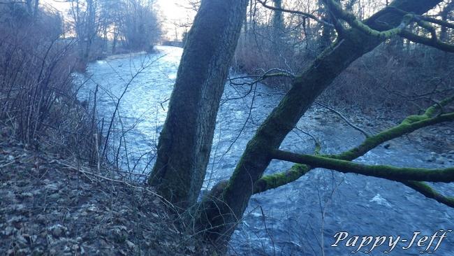 Un petit Ru le Vogelbach, une grande rivière la Thur 00810