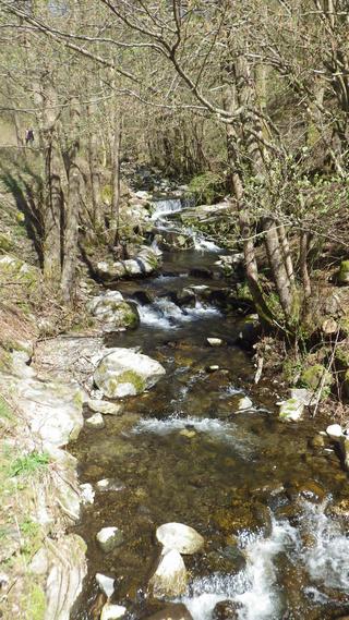 secheresse en Alsace 17_avr10