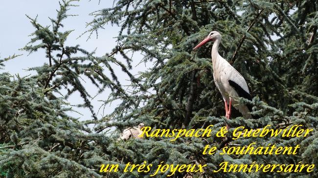 Aniv de Jean-Louis Flandin 26_jui10