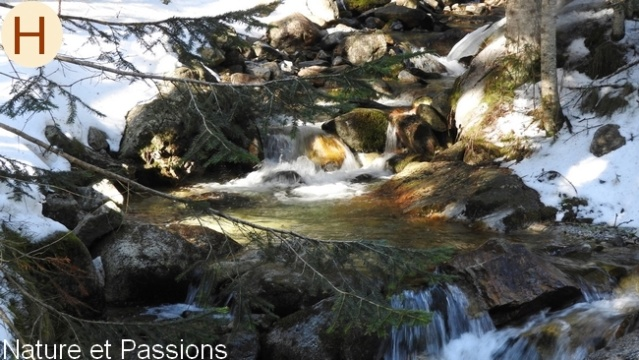 Présentation des photos du mois de mars H19