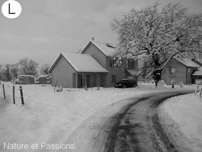 Présentation des photos du mois de février L18