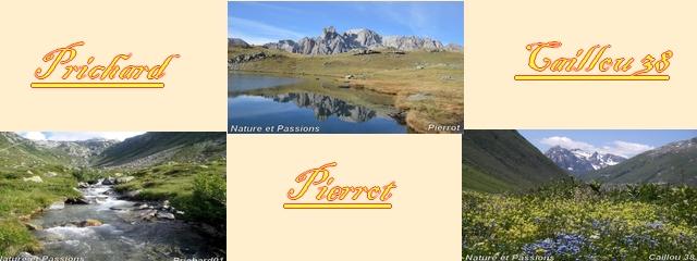 NATURE ET PASSIONS - PORTAIL X_page10