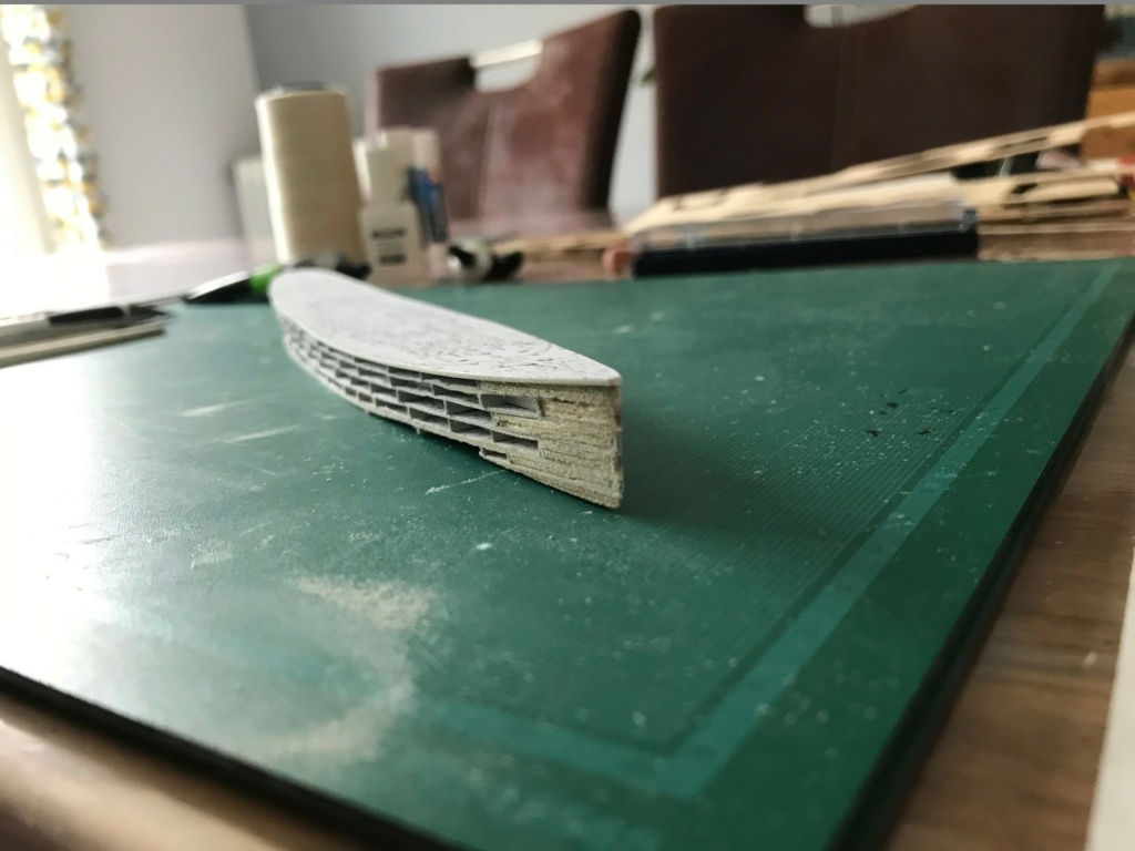RMS Queen Mary I [scratch carton 1/1000°] de PADOU35 Img_4729