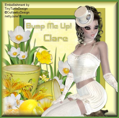 CLARE'S FAIRY BOX - Page 2 Image241