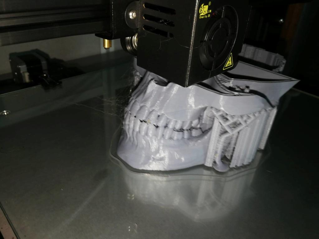 Impressions 3D à vendre Crane_10