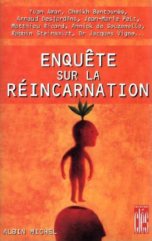 Différents points de vue sur la réincarnation Enquet10