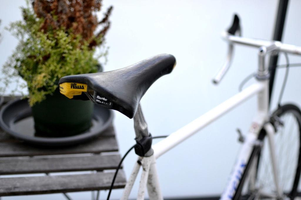 Un vélo mystérieux... Mais beau!!  .... Mais mystérieux  - Cadre G. Cayeux Colmar Columbus Shimano _dsc0410