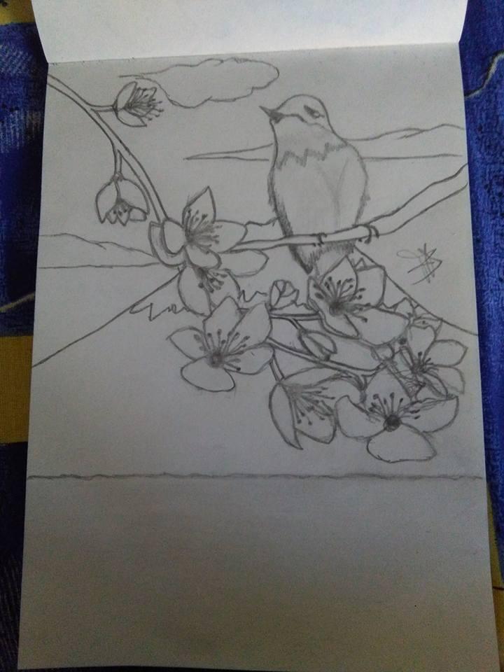 I miei disegni ^^ 15317810