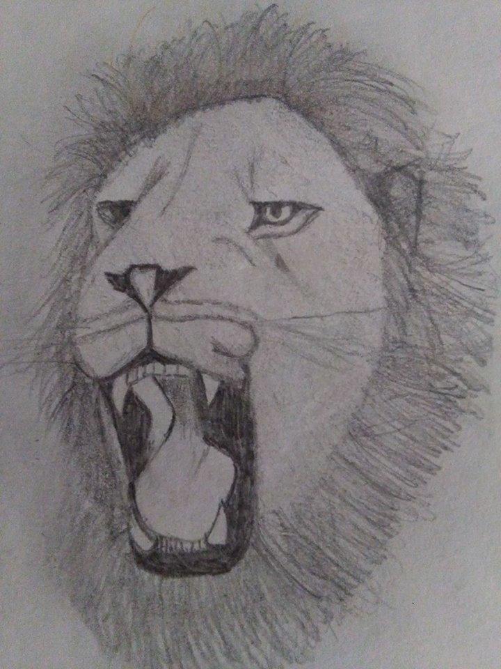 I miei disegni ^^ 17362010