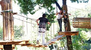 Dia 4 de Maio - Actividade de Arborismo/Natureza 310