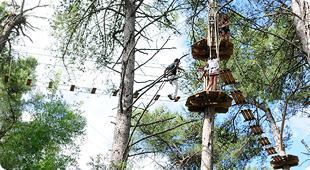 Dia 4 de Maio - Actividade de Arborismo/Natureza 811