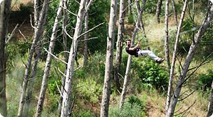 Dia 4 de Maio - Actividade de Arborismo/Natureza 910