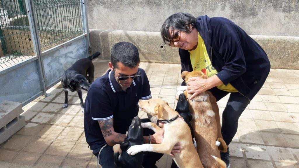 6 de Maio - Solidariedade animal (Tavira/Algarve) (fotos) Img-2076