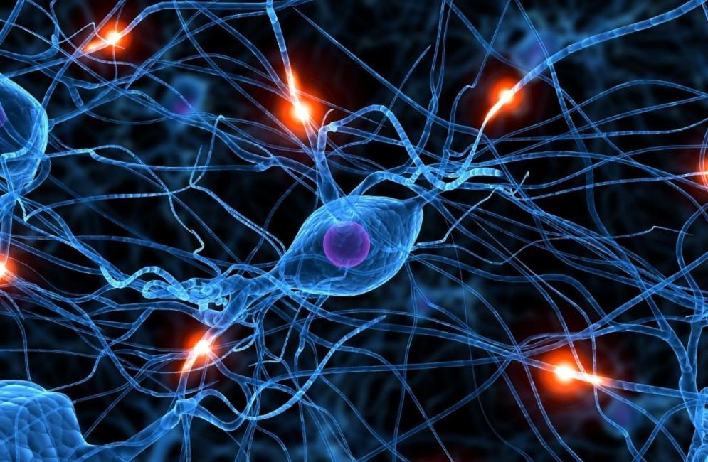 Fondos en tu ordenador. - Página 2 Neuron10