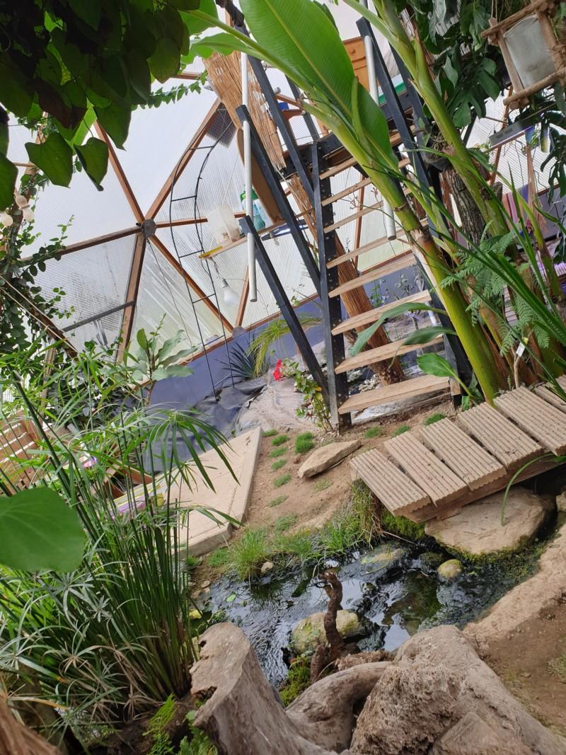 "Présentation de ma serre ""Nuit Tropicale"" avec bassin marin 20190321"