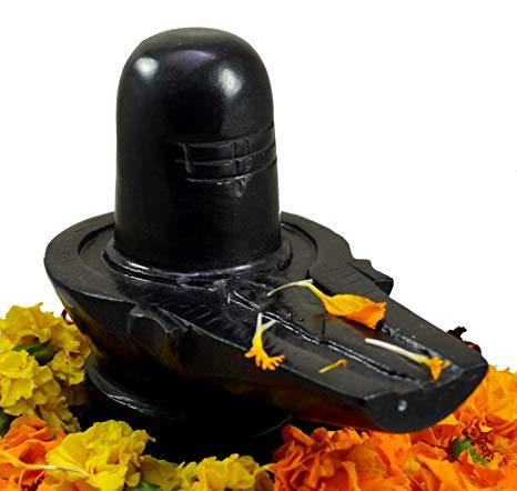 Le livre de Vie de l'Agneau Shiva_10