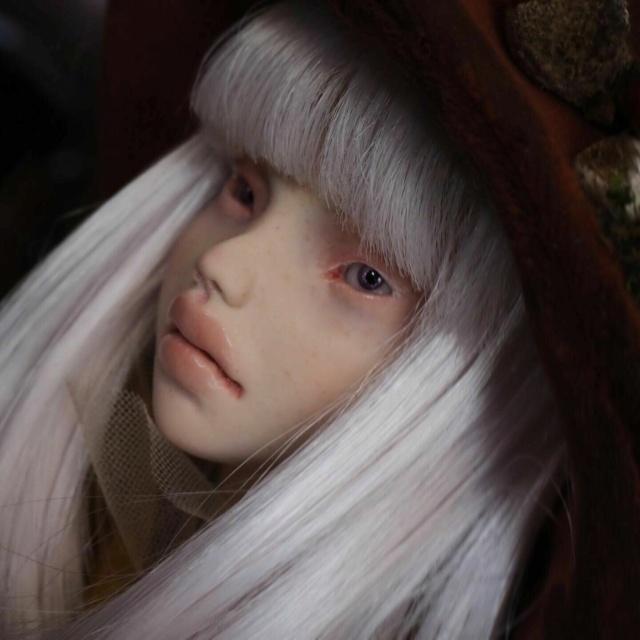 [V] Doll Chateau Iplehouse plusieurs poupées d'artiste etc. Zoya210