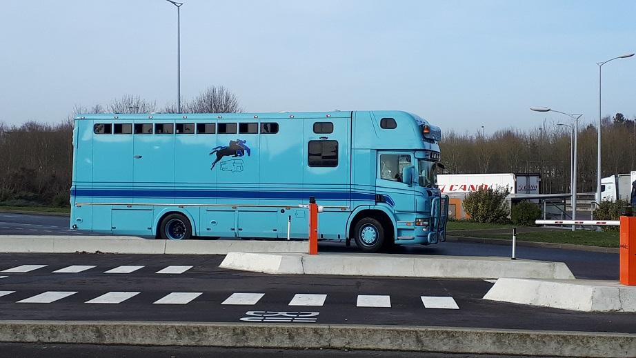 Transports de chevaux - Page 8 20200111