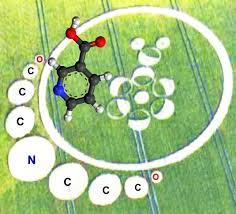 Crop Circles y Tratamiento de Neuroblastoma Niacin10