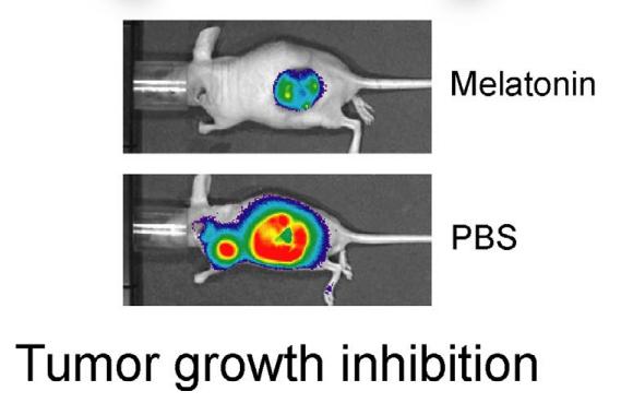 Crop Circles y Tratamiento de Neuroblastoma Tumor_10