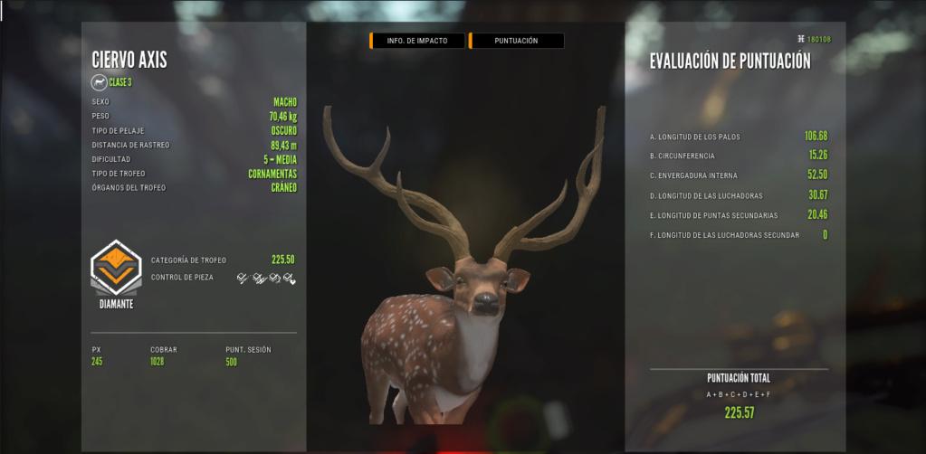 Los ciervos axis truracs ya están aquí. Ciervo26