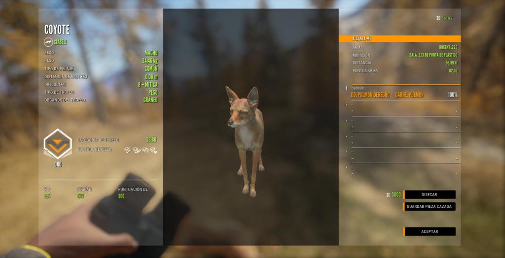 TOP 5 COYOTE Coyote10