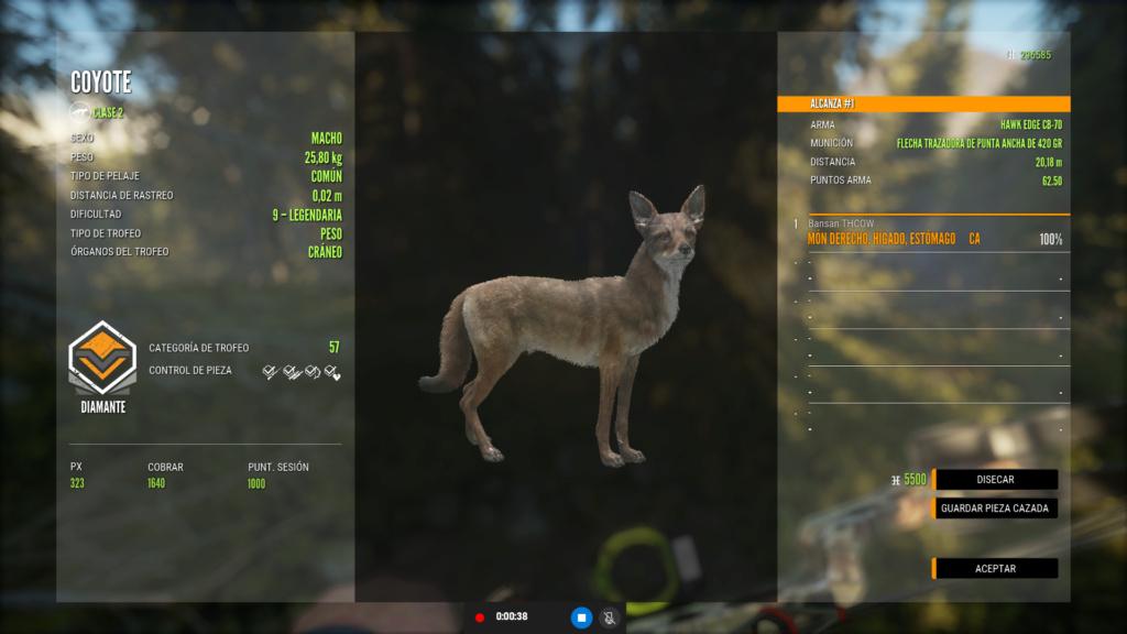 TOP 5 COYOTE Coyote11