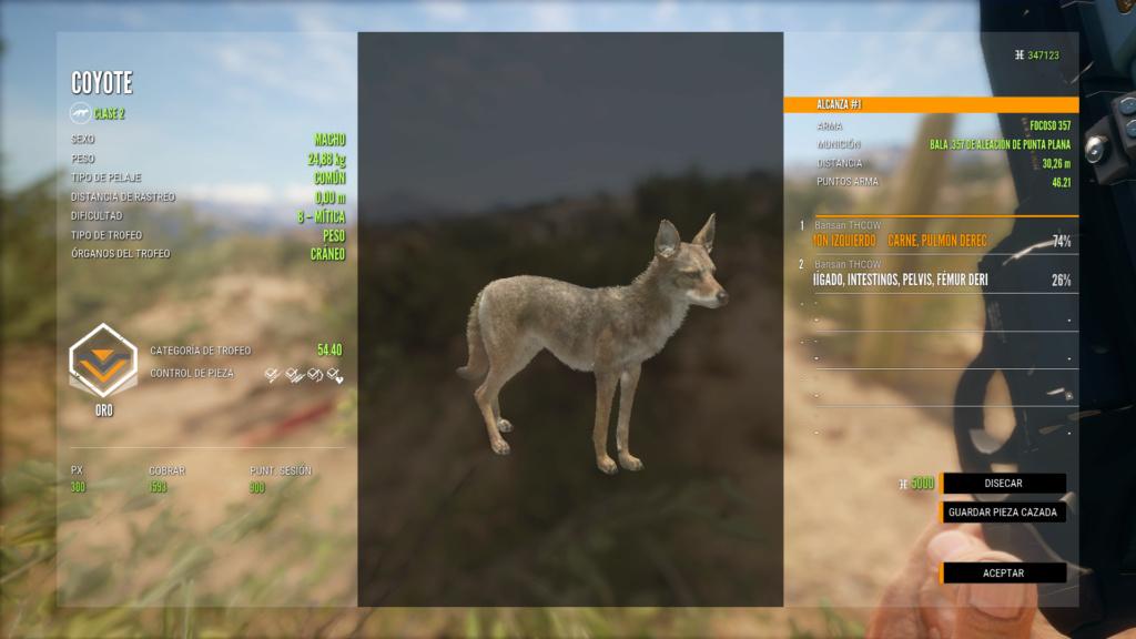 RANCHO DEL ARROYO, PRIMERAS IMPRESIONES Coyote12