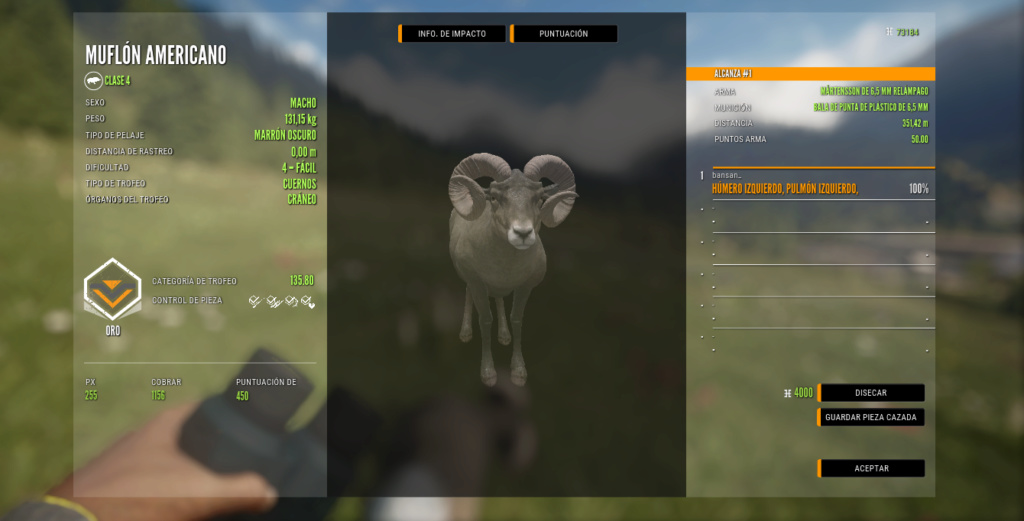 TOP 5 BIGHORN SHEEP Muflon10