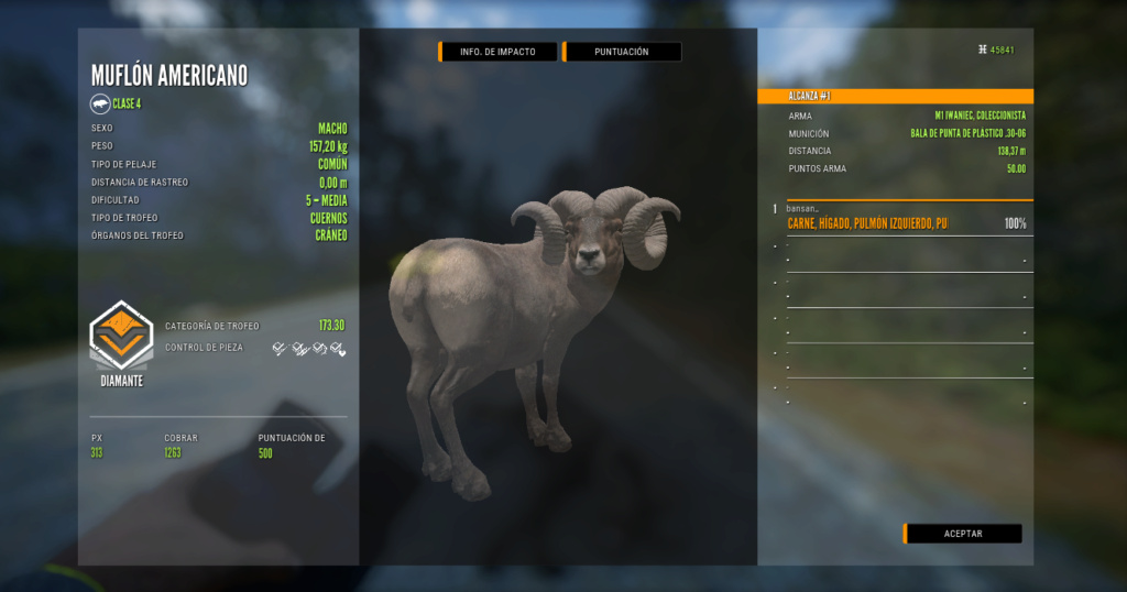 TOP 5 BIGHORN SHEEP Muflon12