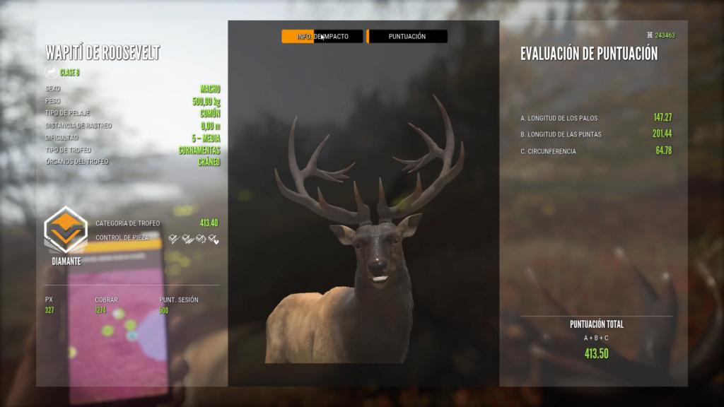 Dos Elk de Roselvet-Wapití diamantes en el mismo lance Wapiti10