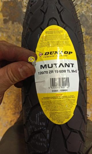 """Nouveau Dunlop """"Mutant"""" : le pneu 4 saisons qui n'a peur de rien ! Img_2736"""